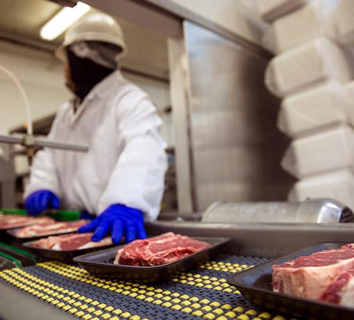Sicurezza dei prodotti agroalimentari